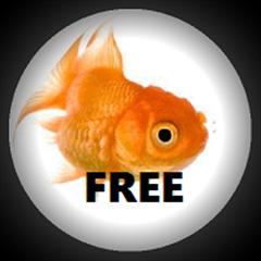 FishEYE Camera App