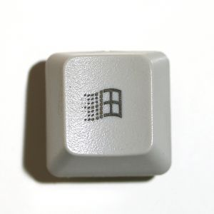 The windows key